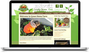 Link to Green Home Farm veg boxes Galway
